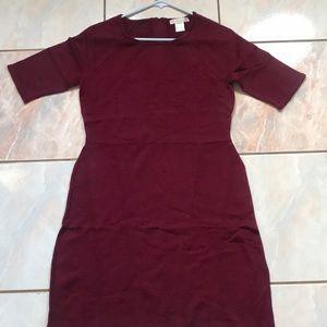 Design history red elbow sleeve merino wool dress